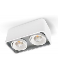 Plafonieră LED cu două spoturi orientabile CARINA